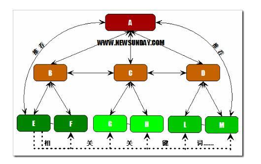 """""""新手站長""""如何分析競爭對手的網站結構"""