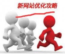 《广安seo》新站收录很多但是没排名如何解决