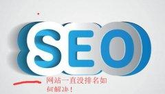 《seo推广》网站一直没有排名如何解决