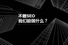 【新手seo学习】新手学习seo为什么不被看好?