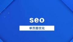 单页面怎么做seo,一个很666的网站