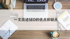 一文简述SEO的优点和缺点