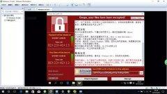 病毒、黑客、暗网……网络安全的背后有哪些惊人内幕?