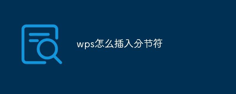 wps怎么插入分节符
