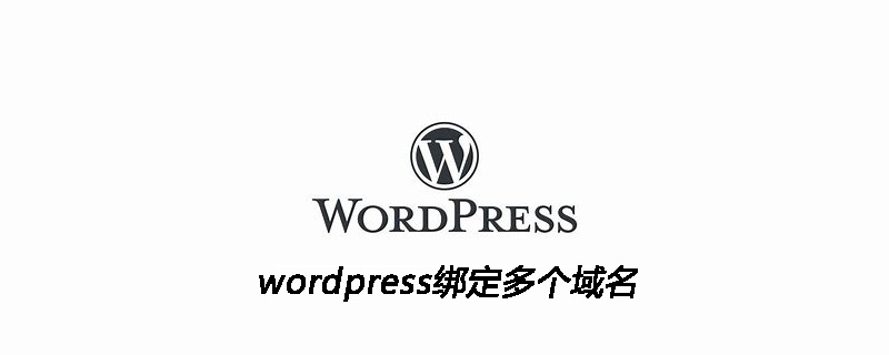 wordpress绑定多个域名