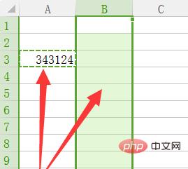 excel中如何将一项内容复制到一整列单元格