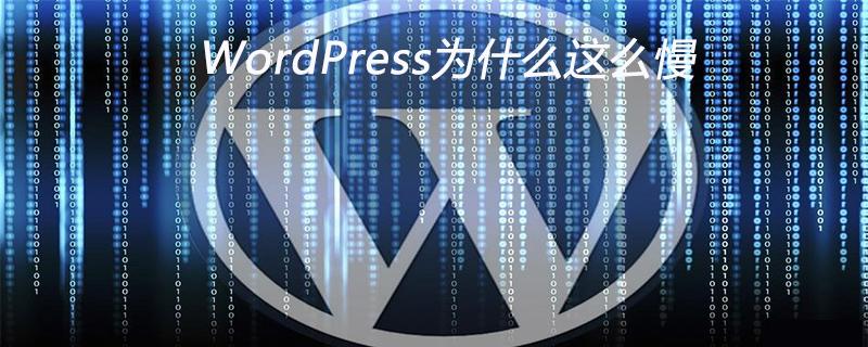 WordPress为什么这么慢