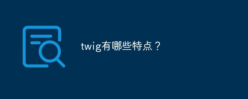 twig有哪些特点?
