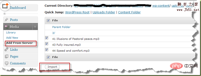 WordPress 插件怎么将服务器文件导入媒体库