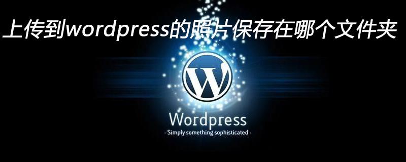 上传到wordpress的照片保存在哪个文件夹