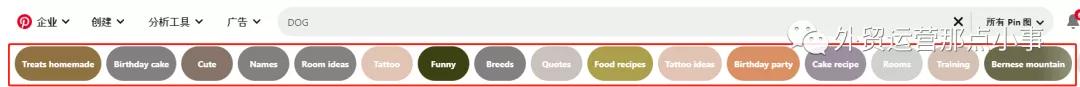 Pinterest SEO 优化