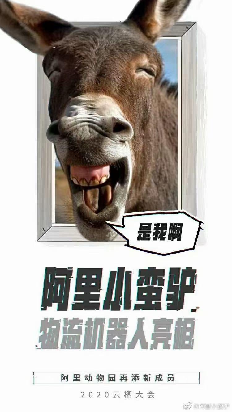 """阿里机器人""""小蛮驴""""来了,每天最多可以送500个快递!"""