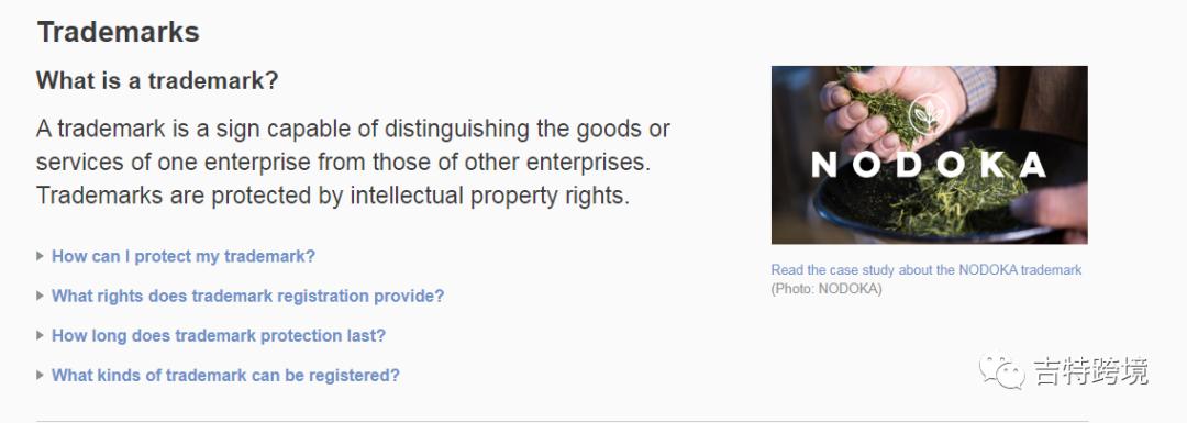 申诉攻略:遇到亚马逊商标侵权应该怎么办?