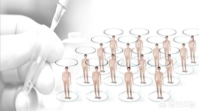 精准、互动的网络品牌营销的关键点在哪里?