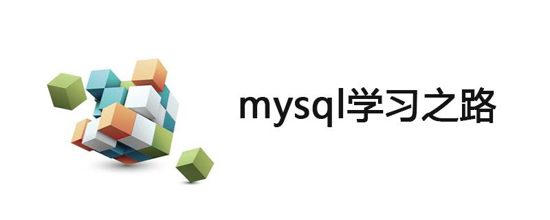新手怎么去学mysql?
