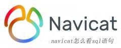 navicat怎么看sql语句
