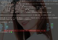 你们要的MyCat实现MySQL分库分表来了