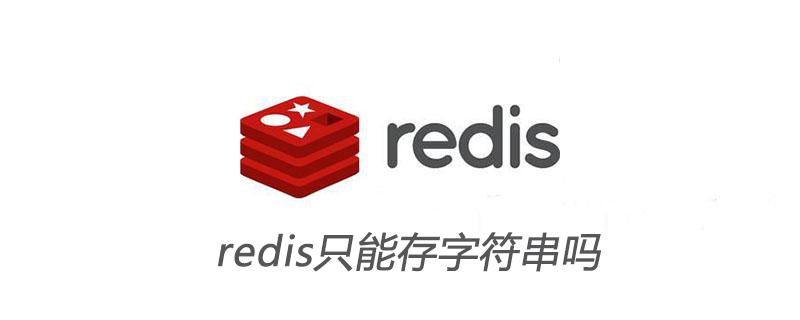 redis只能存字符串吗