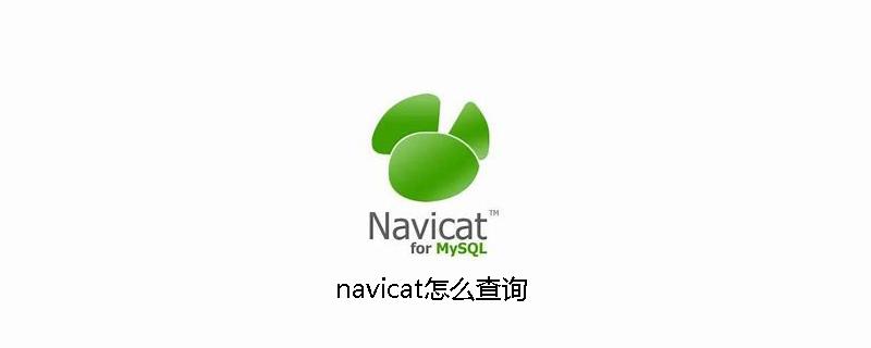 navicat怎么查询