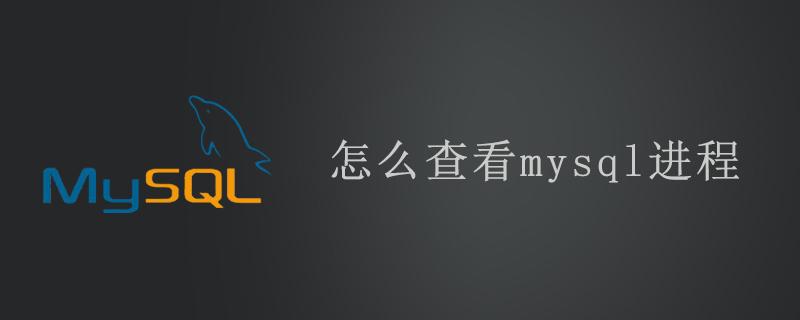 怎么查看mysql进程
