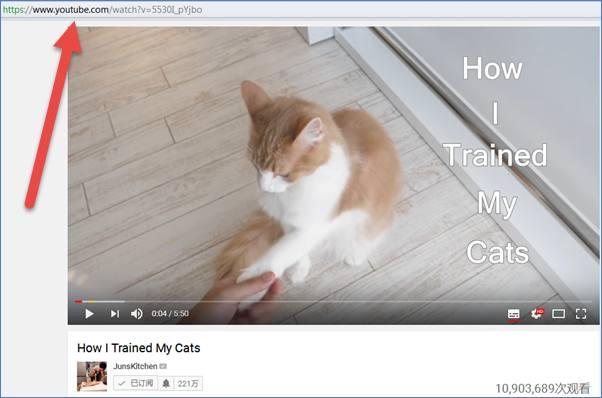 YouTube视频如何下载