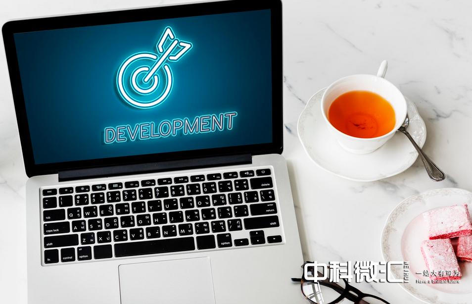 网站程序开发的基本流程(个人开发网站教程)