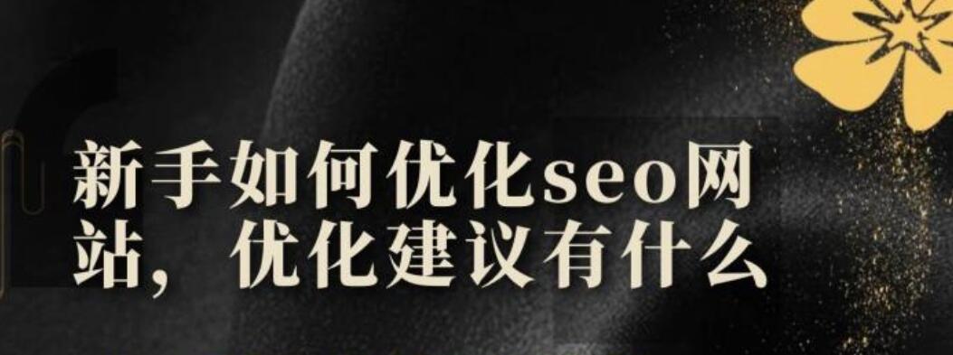 新手如何优化seo网站呢?