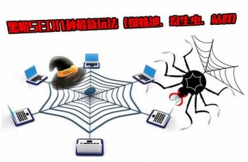 黑蜘蛛博客是什么意思?黑帽SEO的蜘蛛池、寄生虫、站群有什么