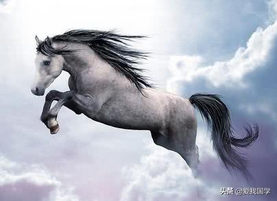 描写马的古诗词名句-赞美骏马的诗词名句