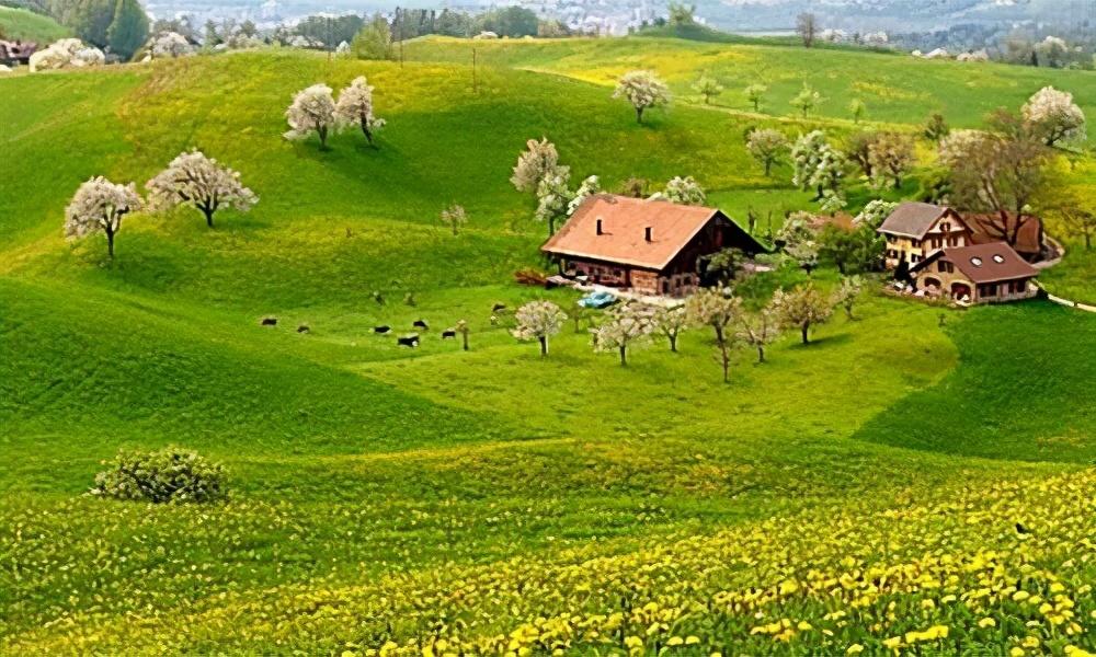 描写家乡美景的句子-描写家乡的风景分享