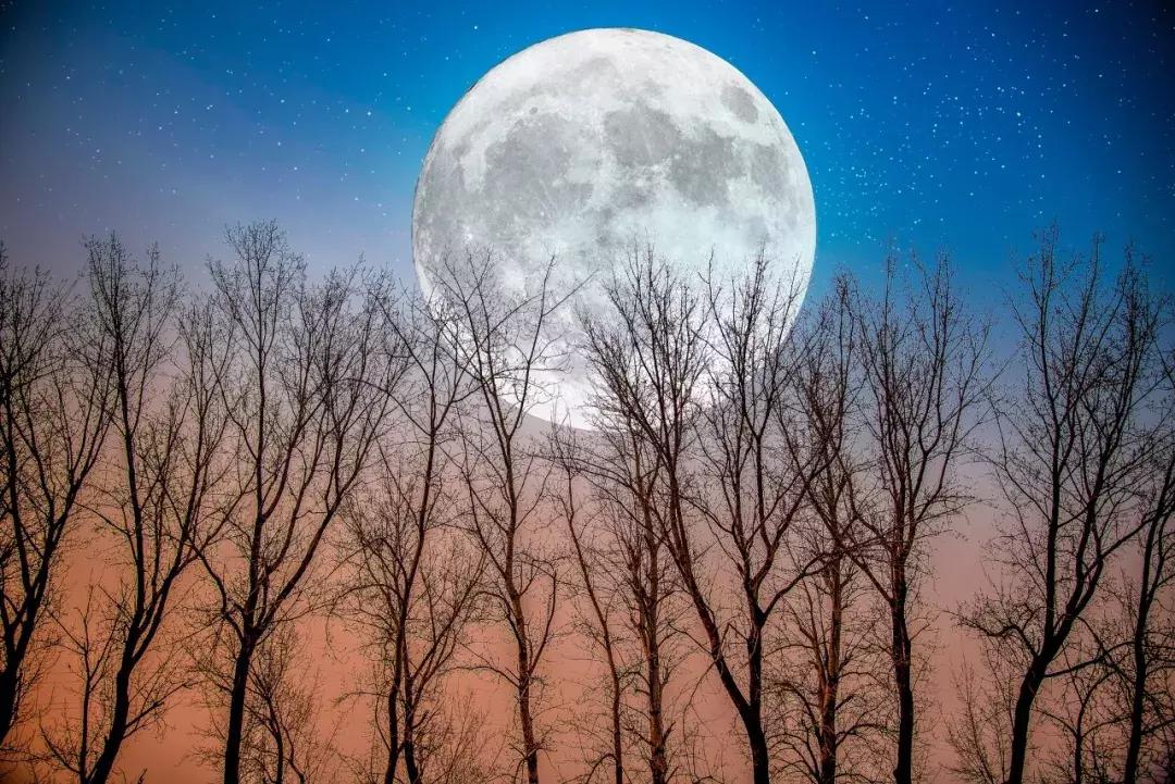 中秋的诗歌都有哪些-值得收藏的10首中秋诗词