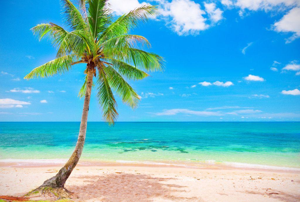 夏日海边的句子唯美短句-适合发圈的海边旅行语录