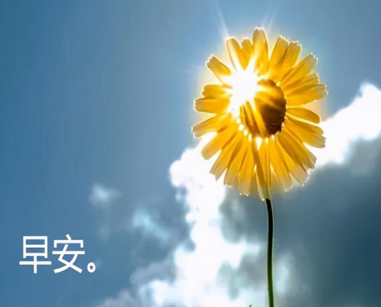 关于日出的唯美句子-发朋友圈配日出的正能量心语