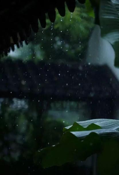 形容倾盆大雨的诗句有哪些-有关狂风暴雨的古诗词赏析