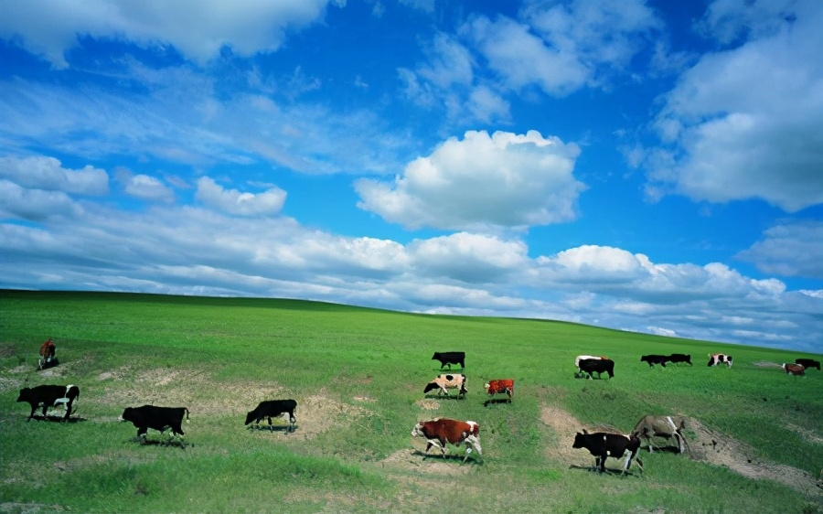 形容风景好的句子有哪些-分享风景如画的唯美句子