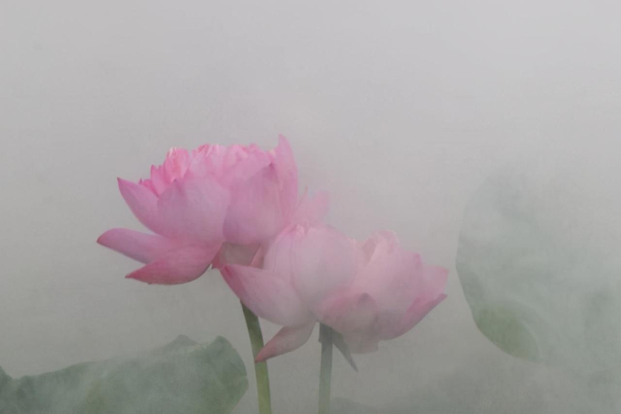 表达心情豁然开朗的句子-受伤后心情豁然开朗的句子