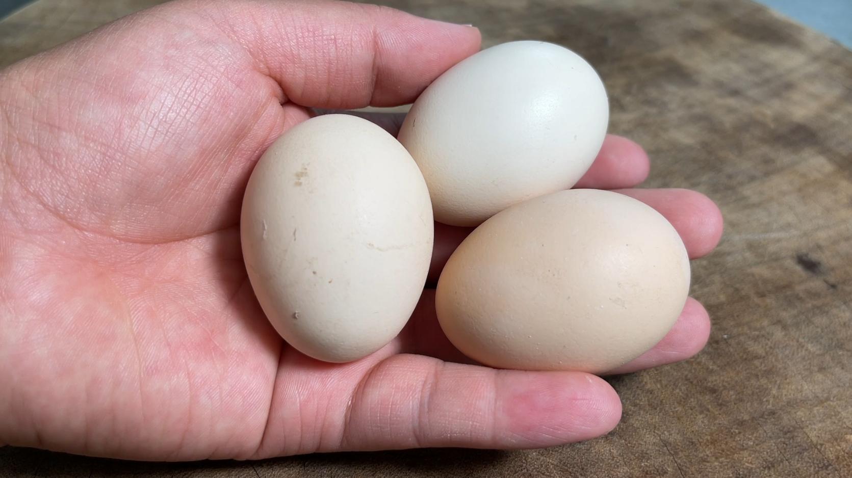 蒸鸡蛋羹,别只会加水蒸,多加这一步,出锅像豆腐脑一样嫩
