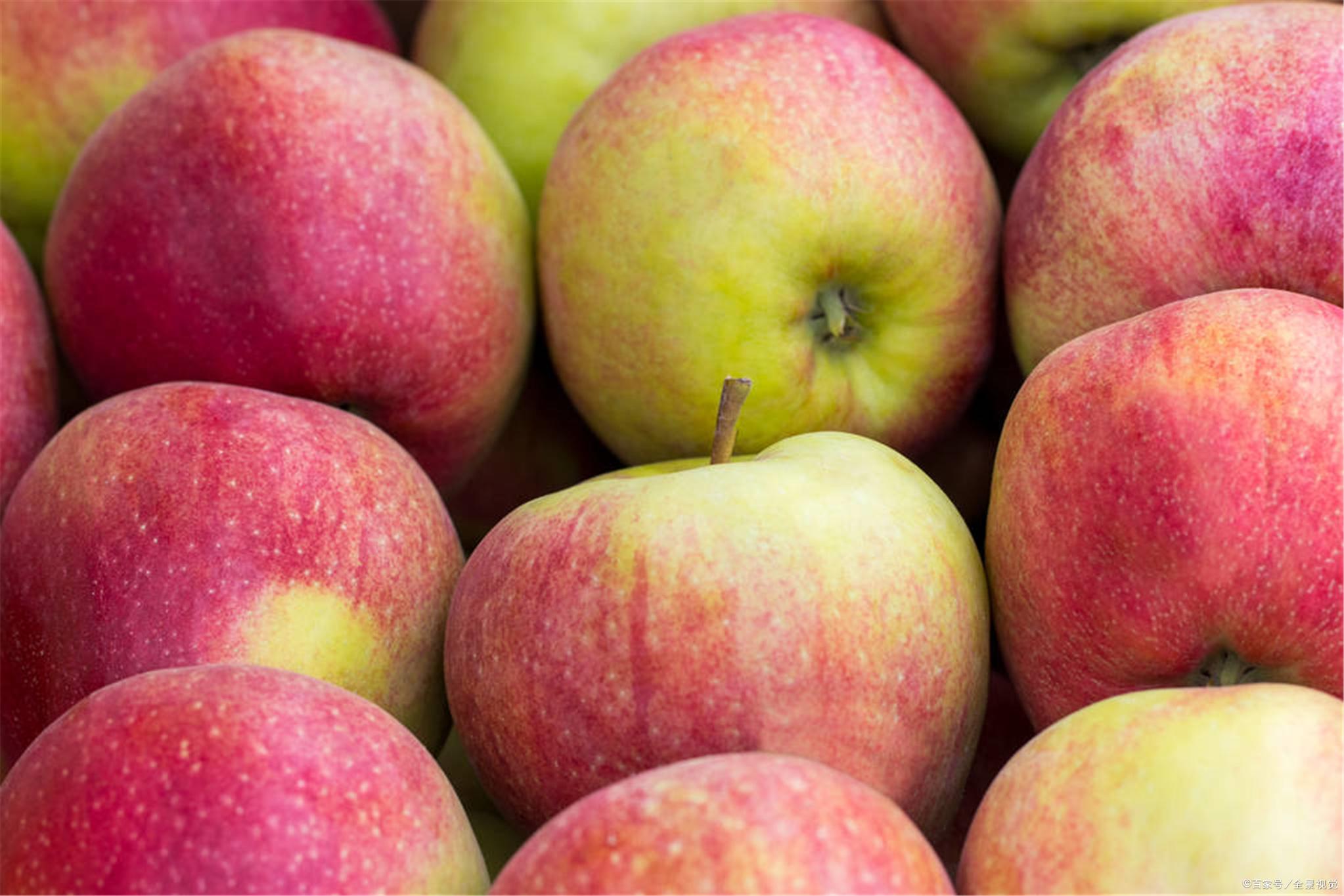苹果何时吃好?晚上?还是早上?这两个时间段或许是好的选择