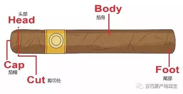 雪茄知识—新手篇   如何正确的剪雪茄?