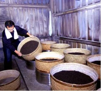 茶叶的炒制