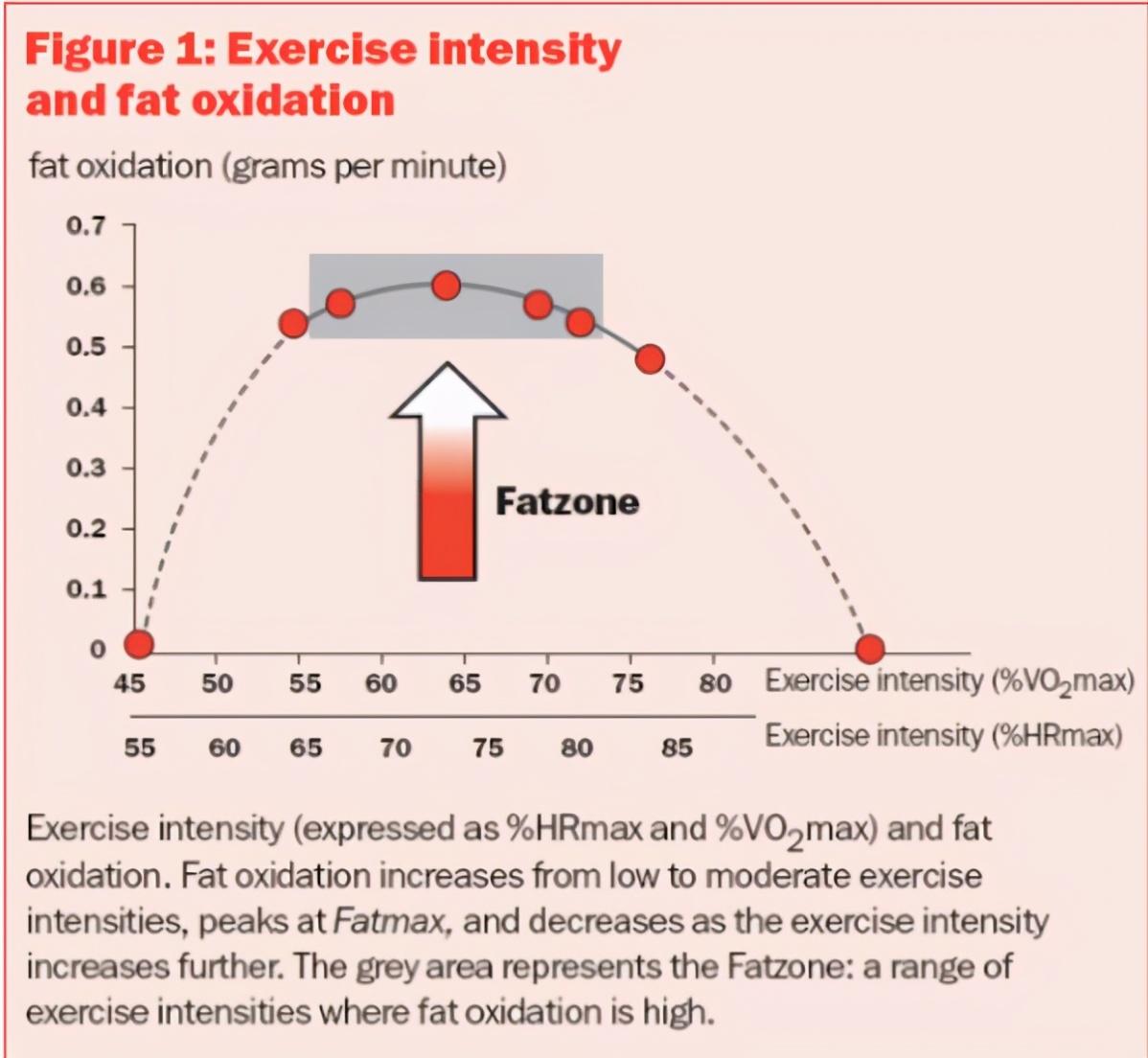 做仰卧起坐减肚子靠谱吗,其实做错了,怎么减掉小肚腩
