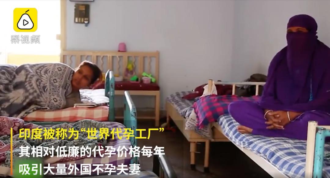 """探访""""世界代孕工厂"""":妇女无奈""""出租""""子宫,赚钱供孩子读书"""