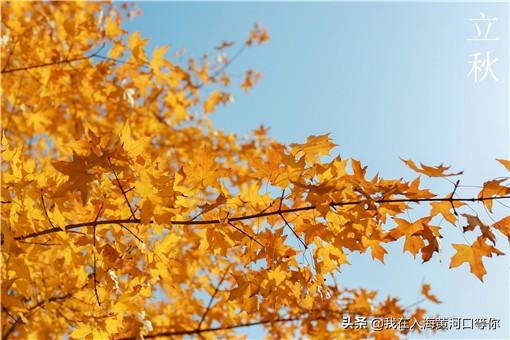 2021年立秋是几月几日几点几分?今年的立秋是早秋还是晚秋?